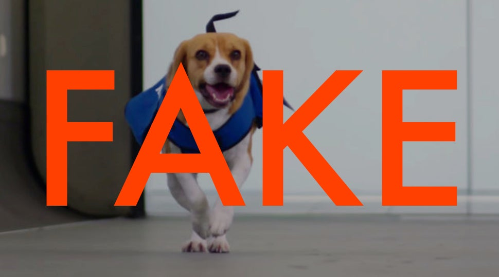 KLM's Sherlock dog is an adorable lie