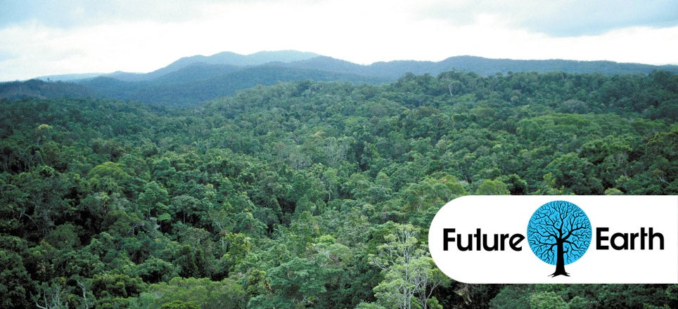 Earth's Tropical Rainforests Could Look Completely Different By The End Of The Century