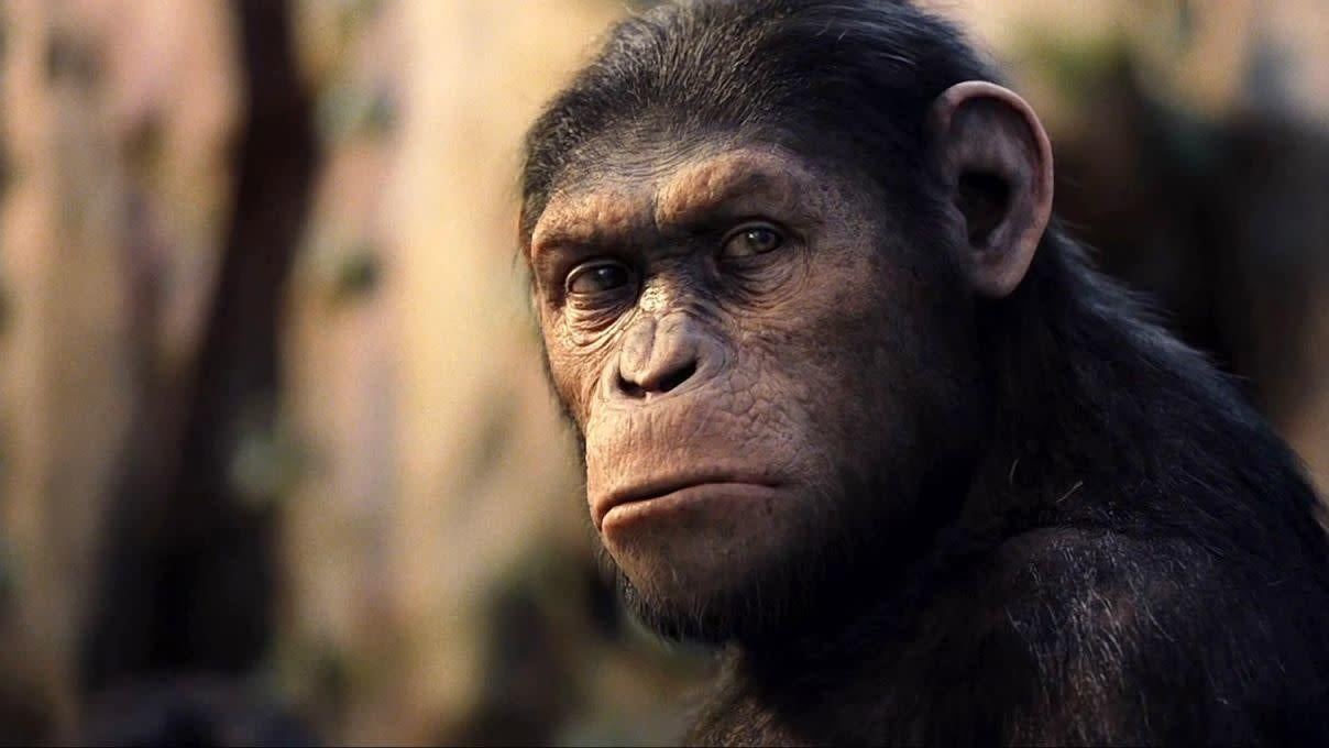 All 9 Planet Of The Apes Movies, Ranked