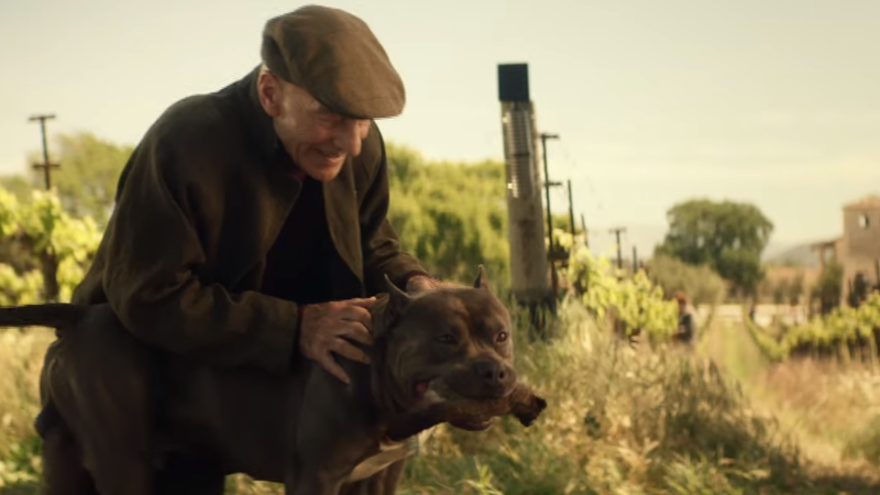 The First Clip From Star Trek: Picard Stars A Very Good Boy