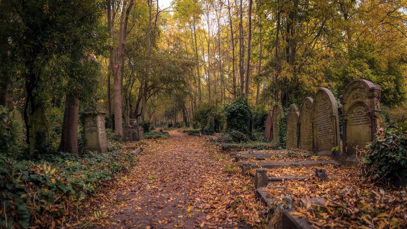 From Beyond The Graveyard: The Rich Roots Of Cemetery Terroir