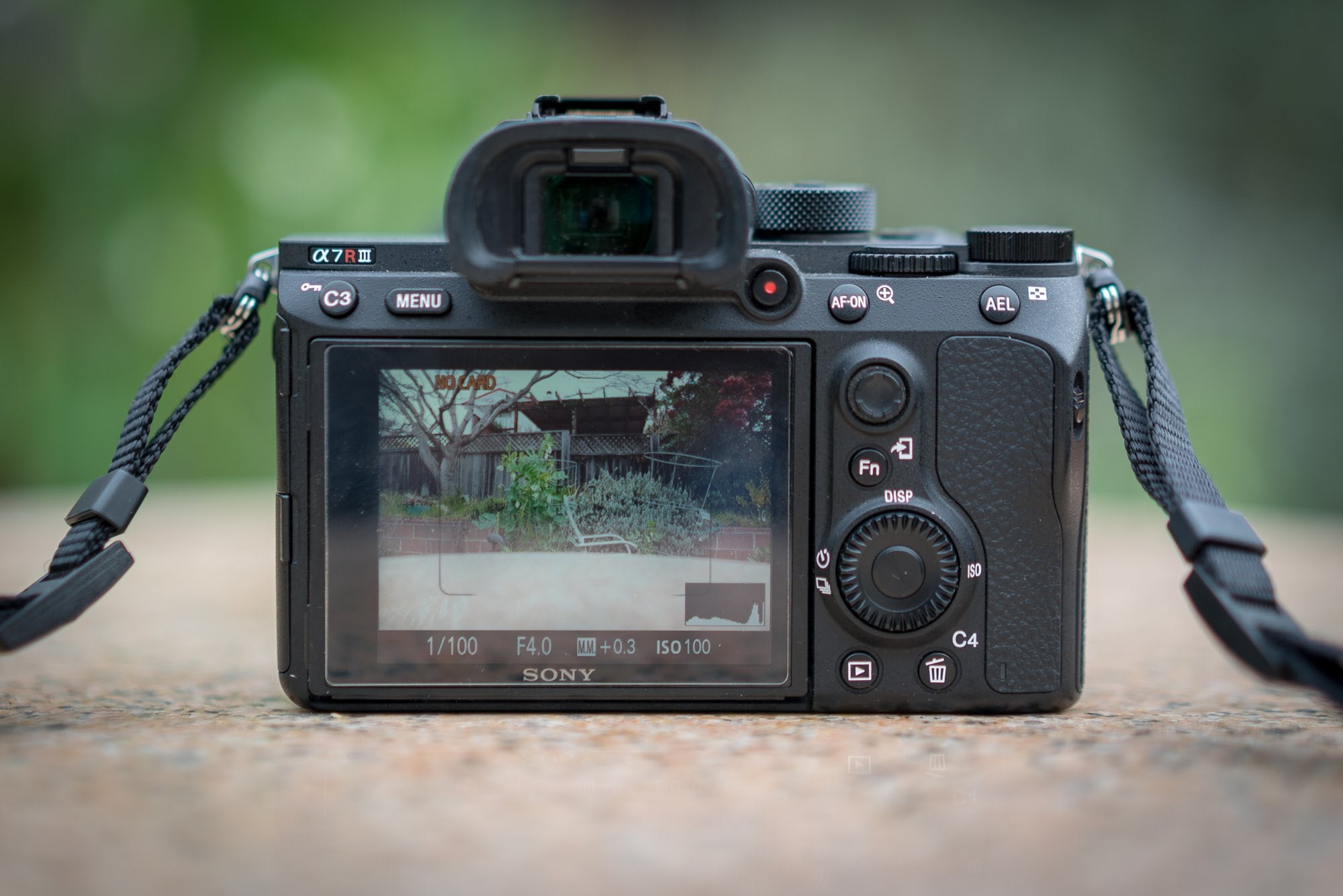 Sony A7R III Review: The New King Of Mirrorless Cameras