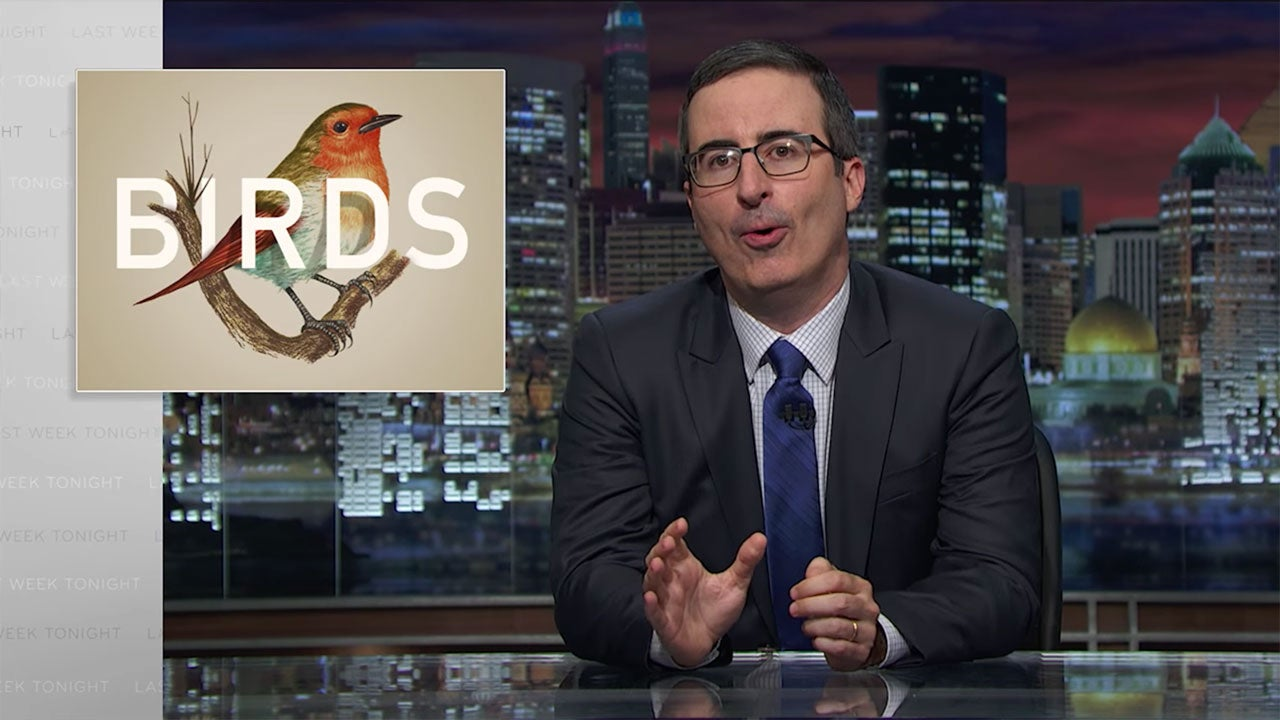 John Oliver Agrees That Birds Are Dicks