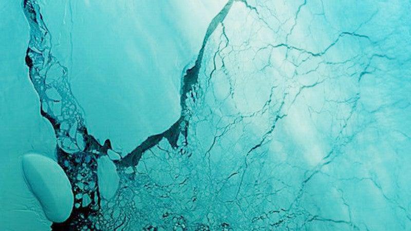 Antarctica's Massive Iceberg Is Starting To Disintegrate