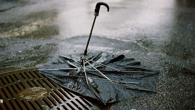 Why Umbrellas Break (And What To Look For In A Good One)