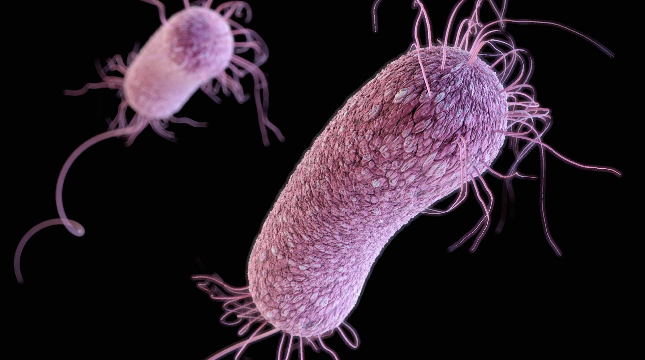 It Took Just Three Weeks For Superbug To Resist Last-Resort Drug, Doctors Say
