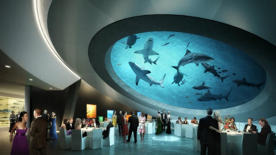 It Took 25 Hours of Continuous Concrete Pouring To Build This Aquarium