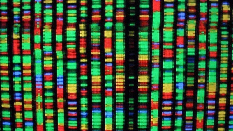 Gene Editing Controversy Reminds Us Just How Much Money Influences Science