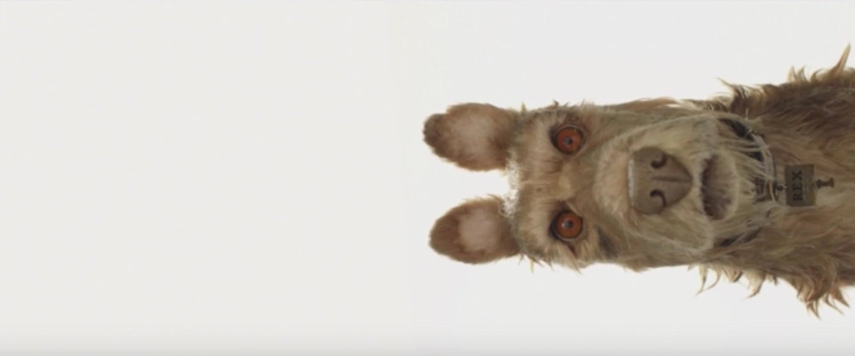 Wes Anderson Just Announced The Title And Cast Of His New Stop-Motion Animated Movie