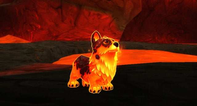 Blizzard Sets Corgis On Fire For WoW's Tenth Anniversary