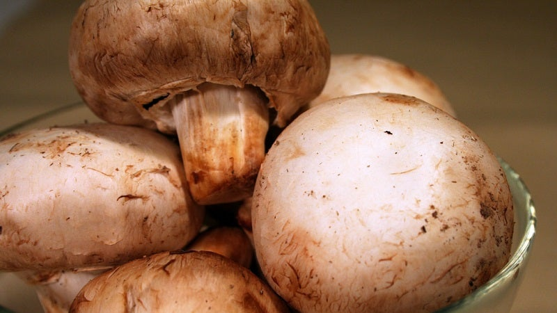 Keep Mushrooms Fresh Longer By Storing Them In An Open Paper Bag