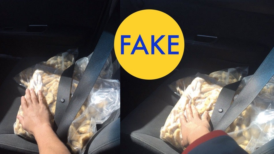 9 More Viral Photos That Are Completely Fake
