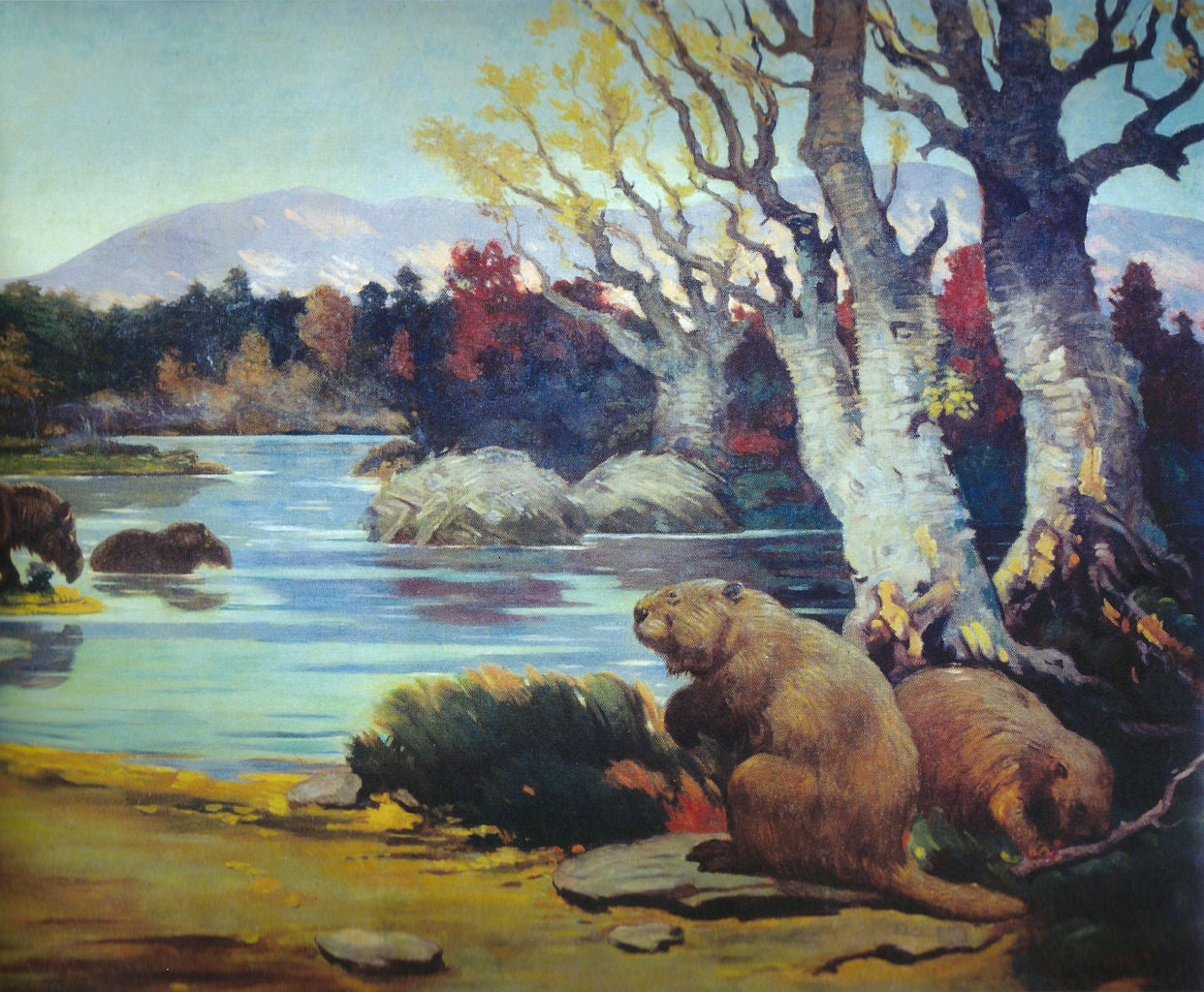 North America Was Once Full Of Super Tiny Beavers, And Super Giant Ones