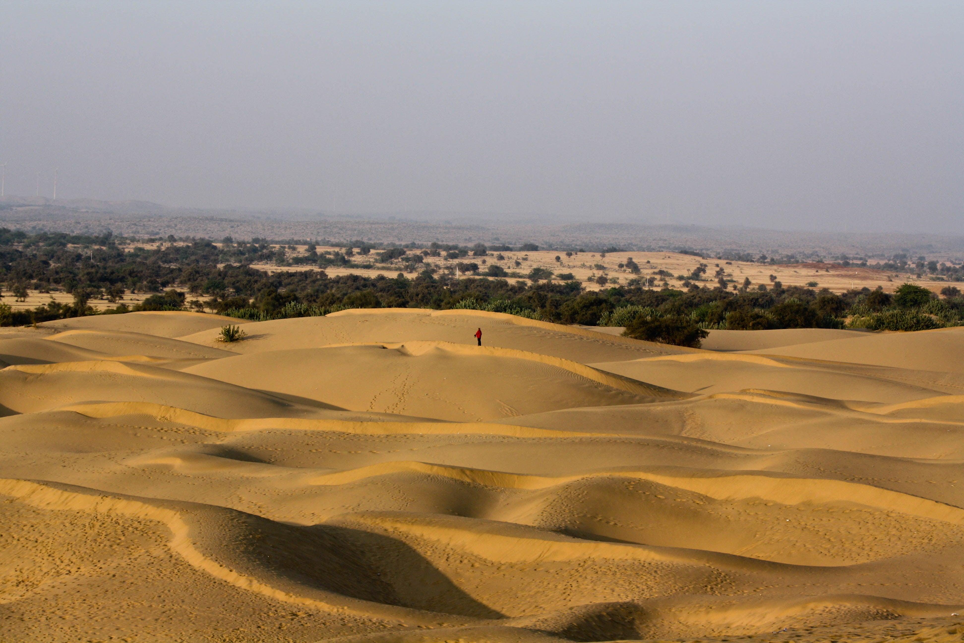 Guy films himself having an LSD trip in the middle of the desert