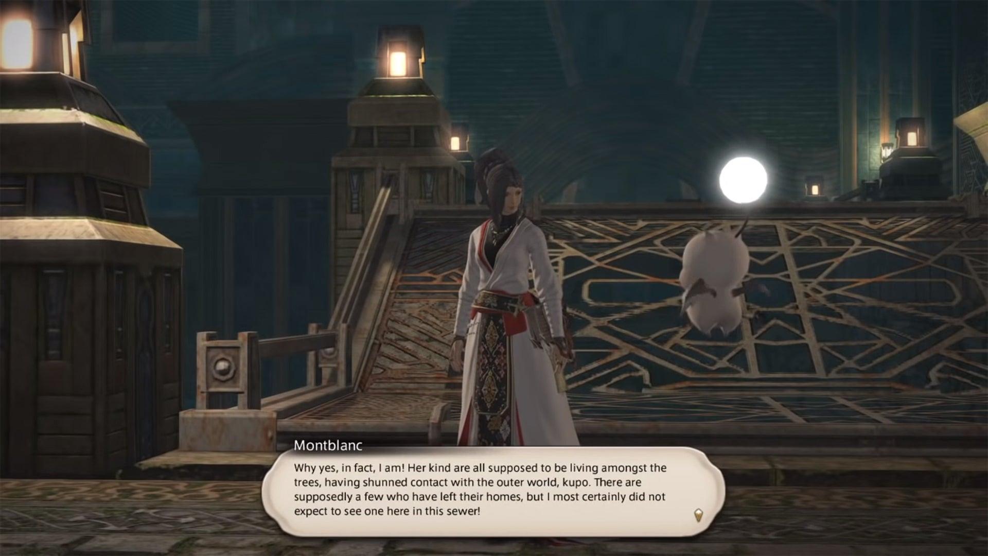 Final Fantasy XIV's First Bunny Person Is A Familiar Face | Kotaku