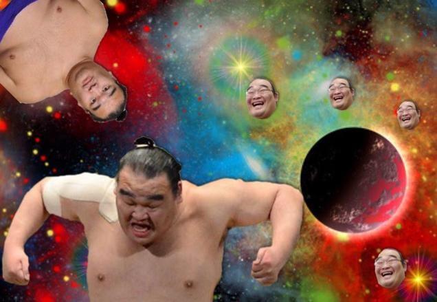 Space Cats, Meet Space Sumo Wrestler