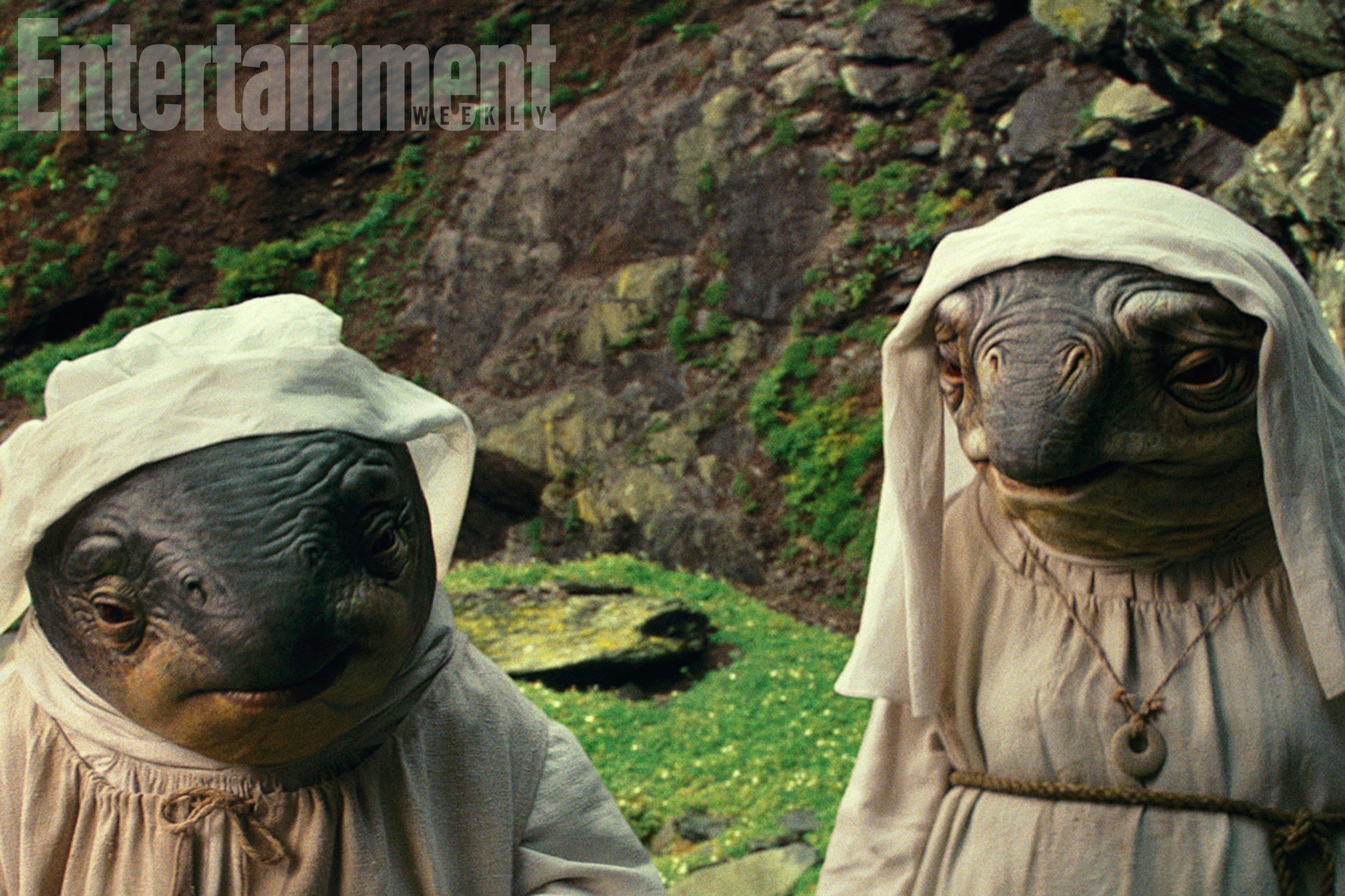 We're Extremely Curious AboutStar Wars' NewestAlien Creatures, The Caretakers