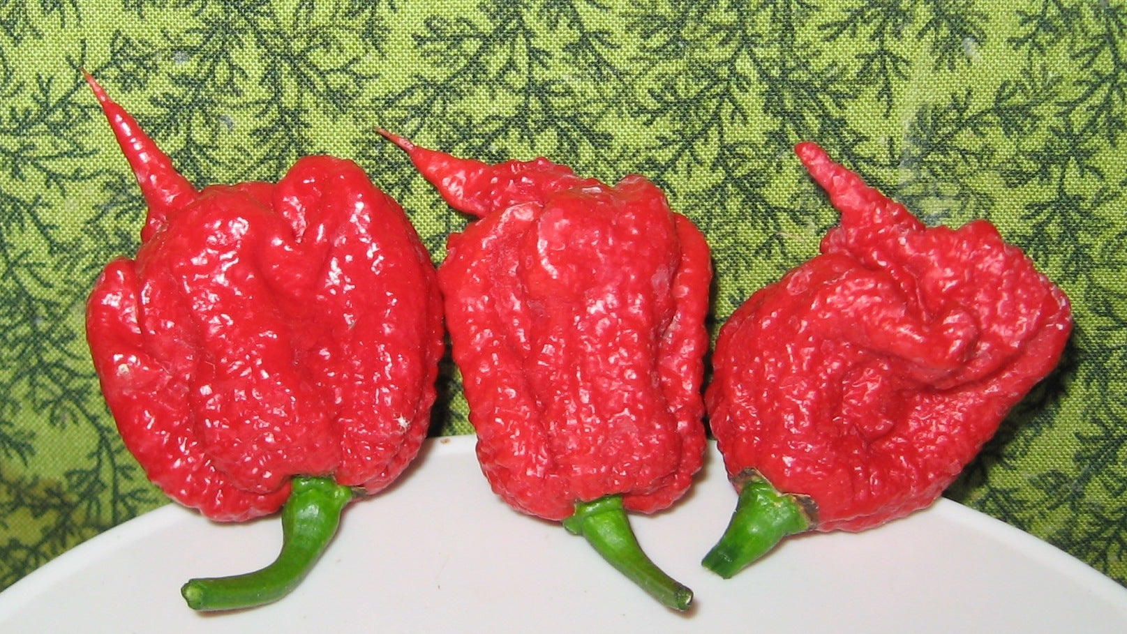 World's Hottest Chilli Sends Man To The ER With Thunderclap Headaches