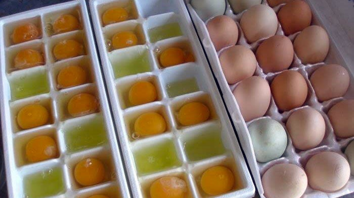 Freeze Eggs in Ice Cube Trays to Preserve Them Longer