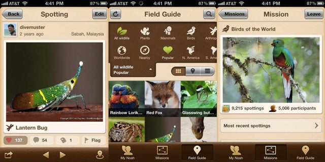 The Best Nature Apps For Springtime Adventures Outdoors