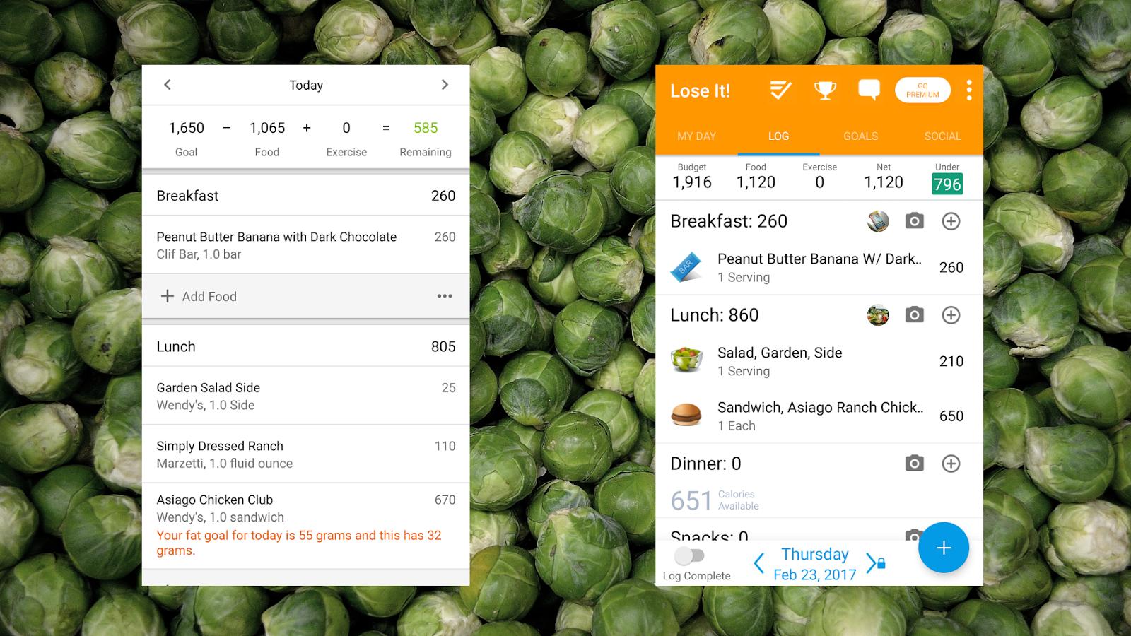 Diet Tracker Showdown: MyFitnessPal Vs  Lose It | Lifehacker