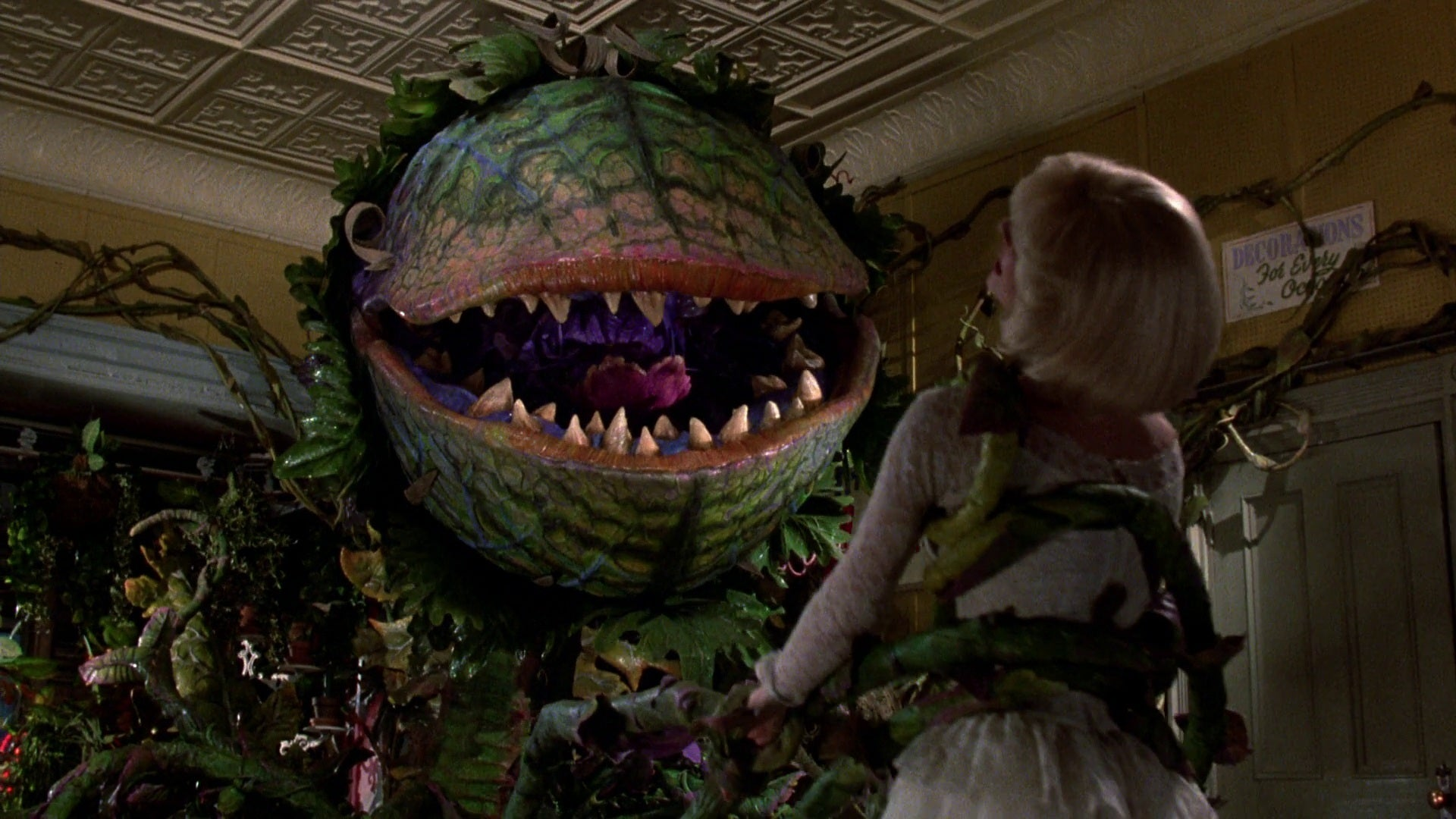 The Guy Behind CW's DC Universe Is Remaking Little Shop Of Horrors