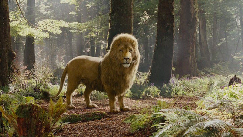 They're Officially Making Another Chronicles Of Narnia ...