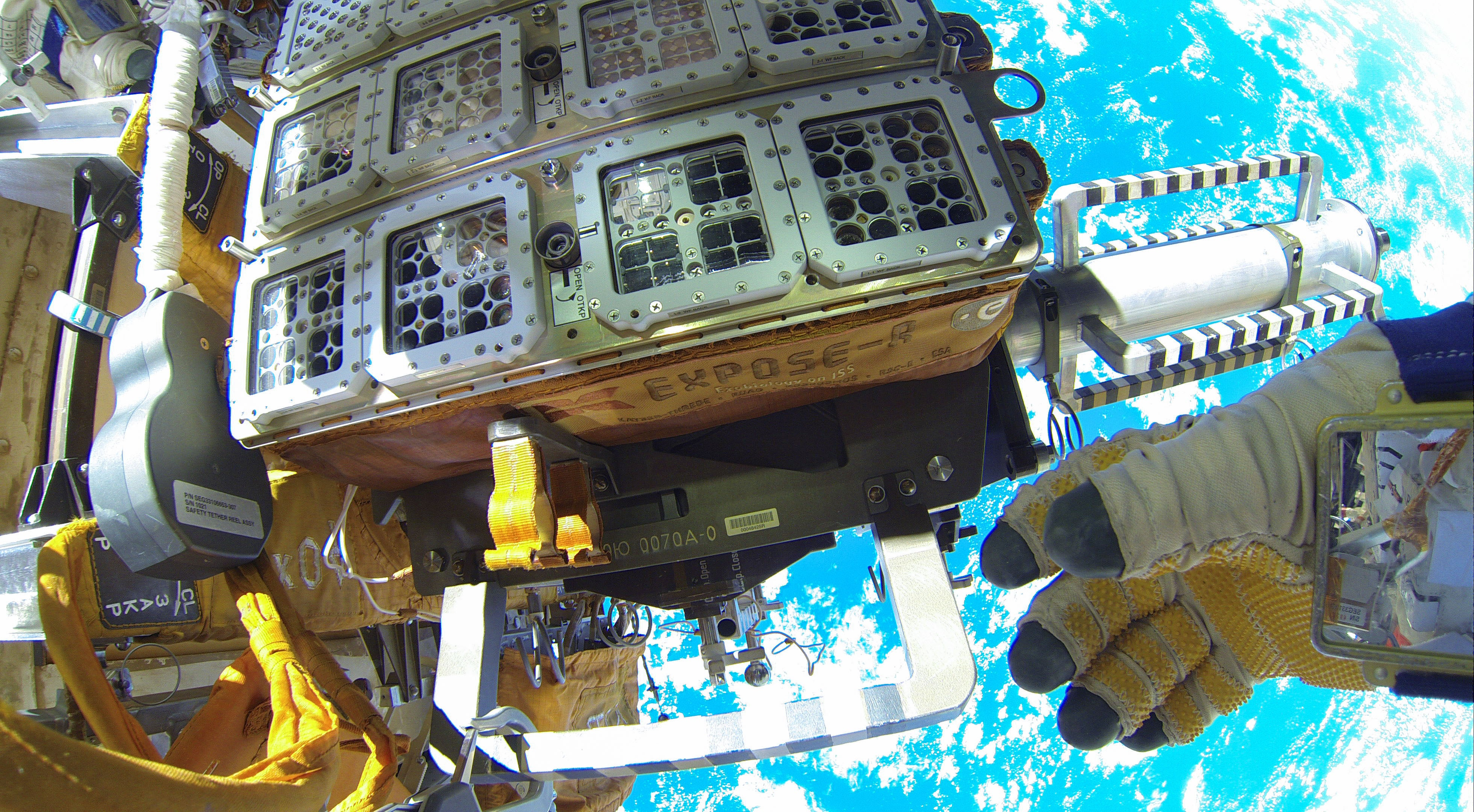 This Is How Organisms Are Tested to See if They Can Survive Space