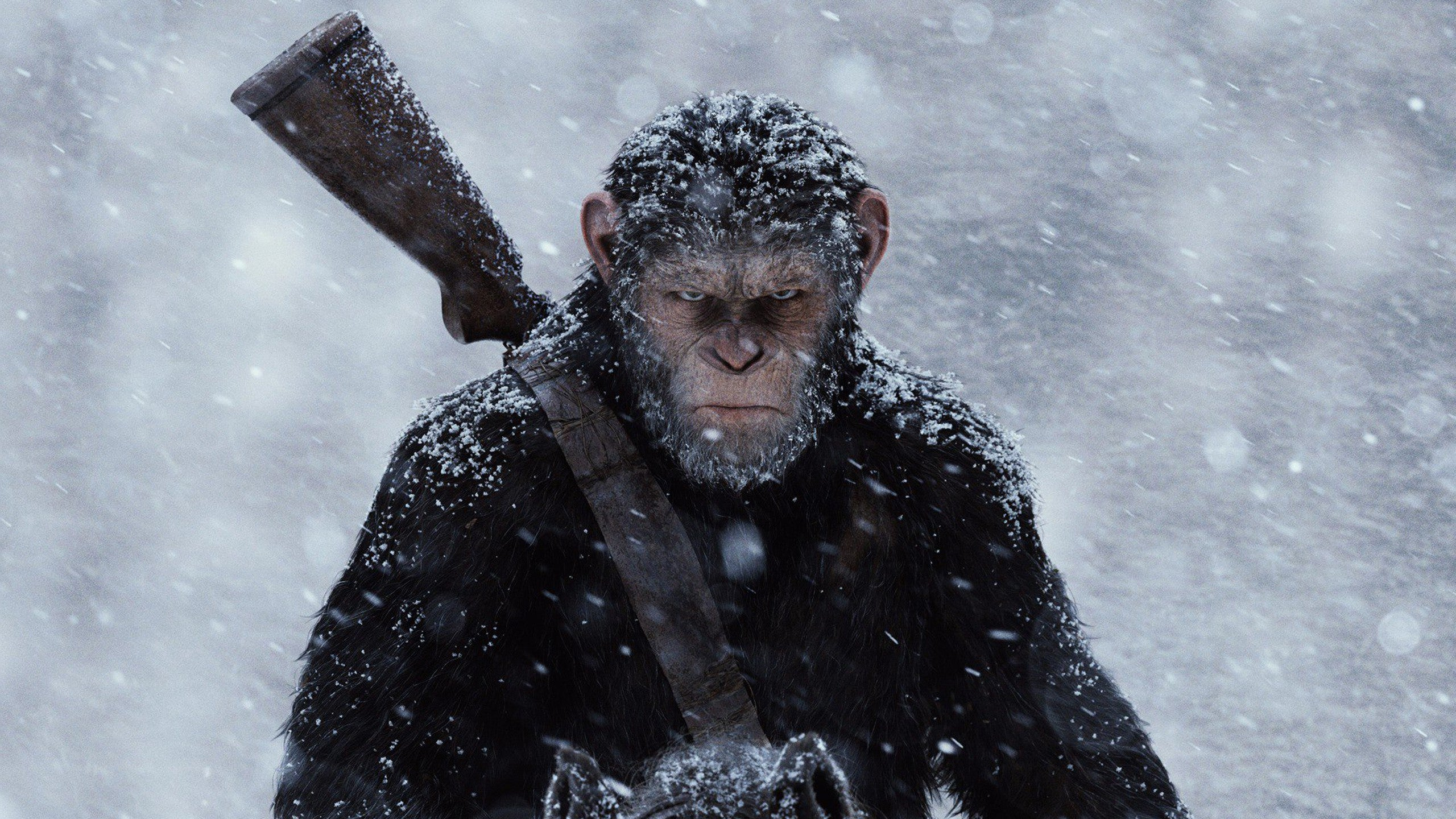 How Scientifically Plausible Is The 'Simian Flu' InPlanet Of The Apes?