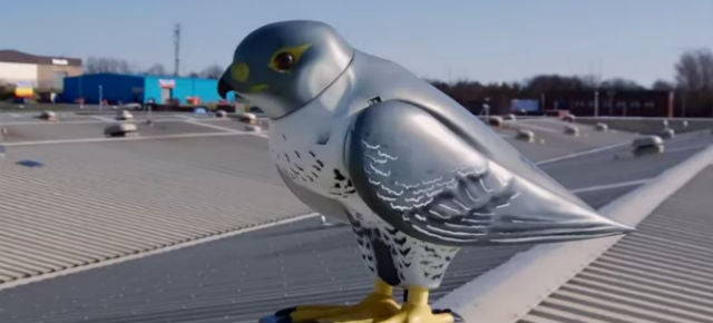 Robotic Birds Are the (Ridiculously Expensive) Modern-Day Scarecrows