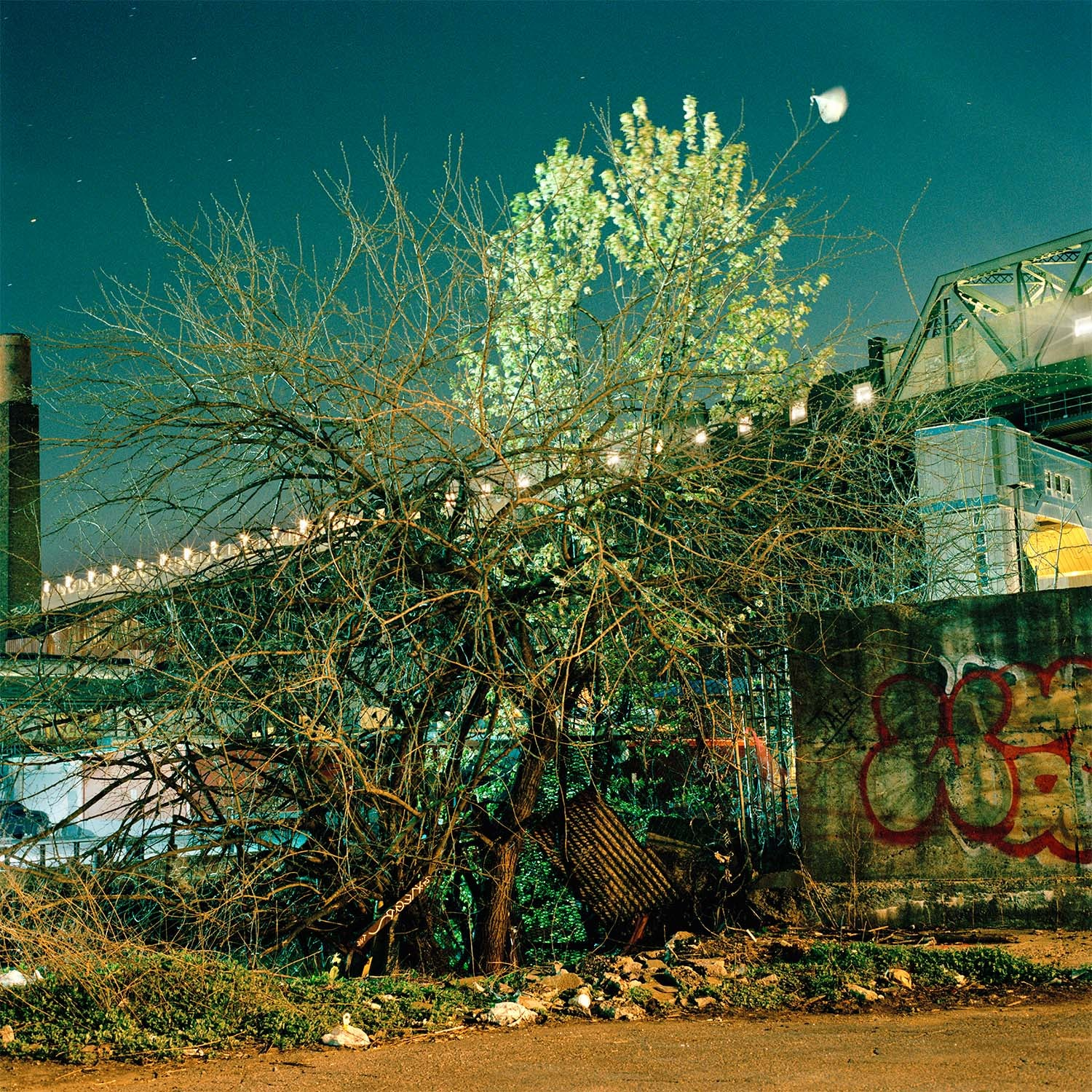 An Eerie Portrait Of Brooklyn's Former Industrial Wasteland