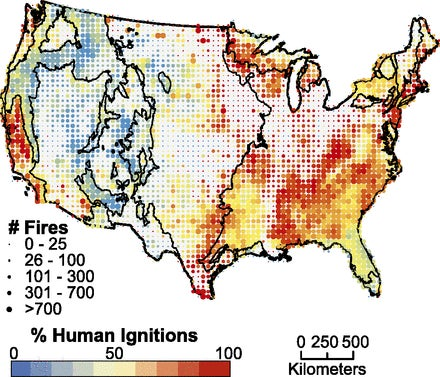 Trees In The Us Northeast S Pine Barrens Require Fires To Produce Their Seeds For Example According To Timothy Mihuc A Professor Of Environmental Science