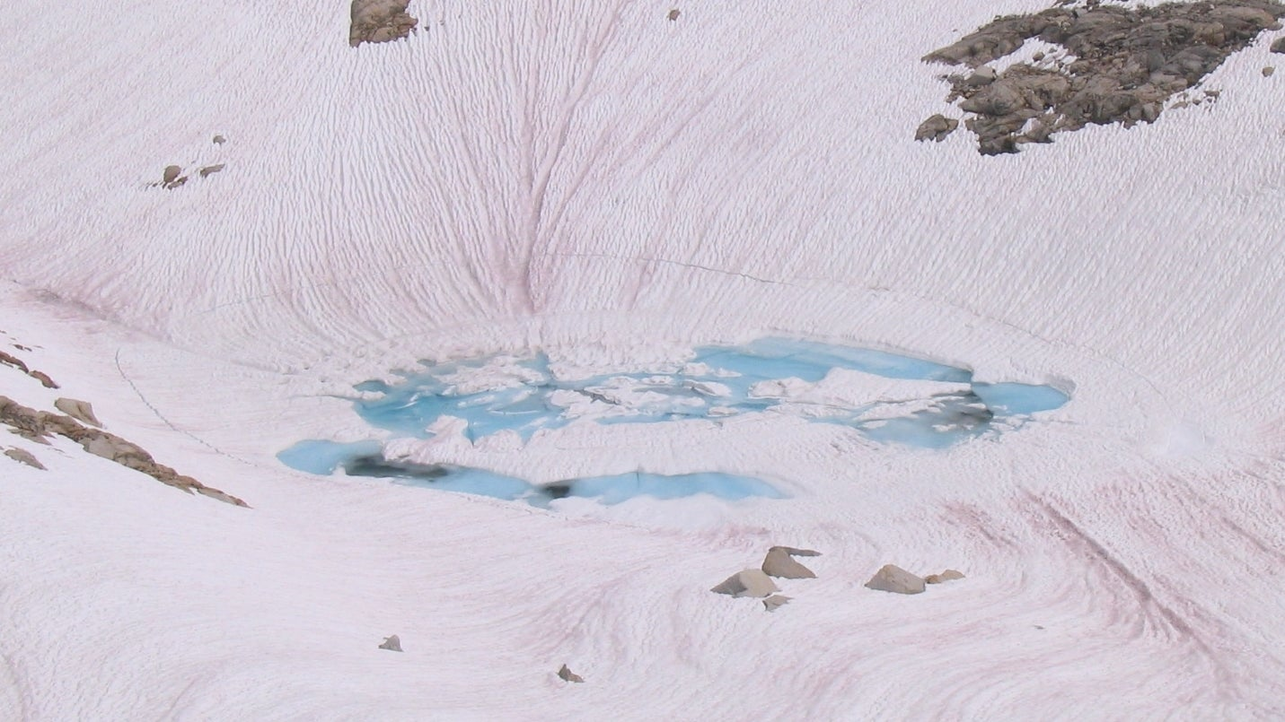 More Evidence That Pink Snow Will Be A Problem For The Planet