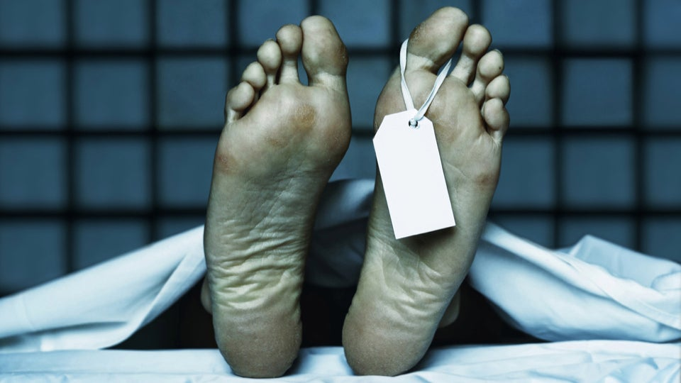 Scientists Caught 'Undead' Genes Coming Alive After Death