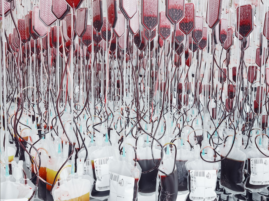 Inside the Blood Factory That Keeps Track of the World's Rare Donors