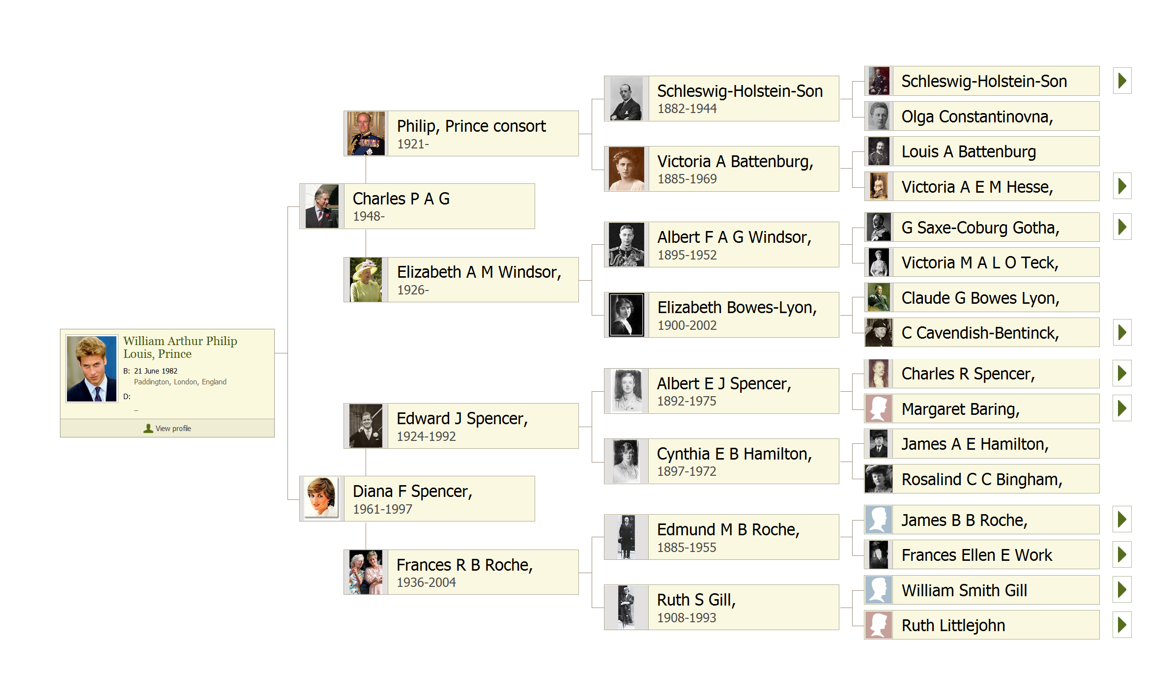 'Stunning' Family Tree Includes 13 Million People Over 11 Generations