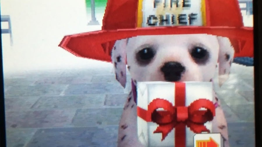 Abandoned Nintendogs Found Alive After Almost 10 Years