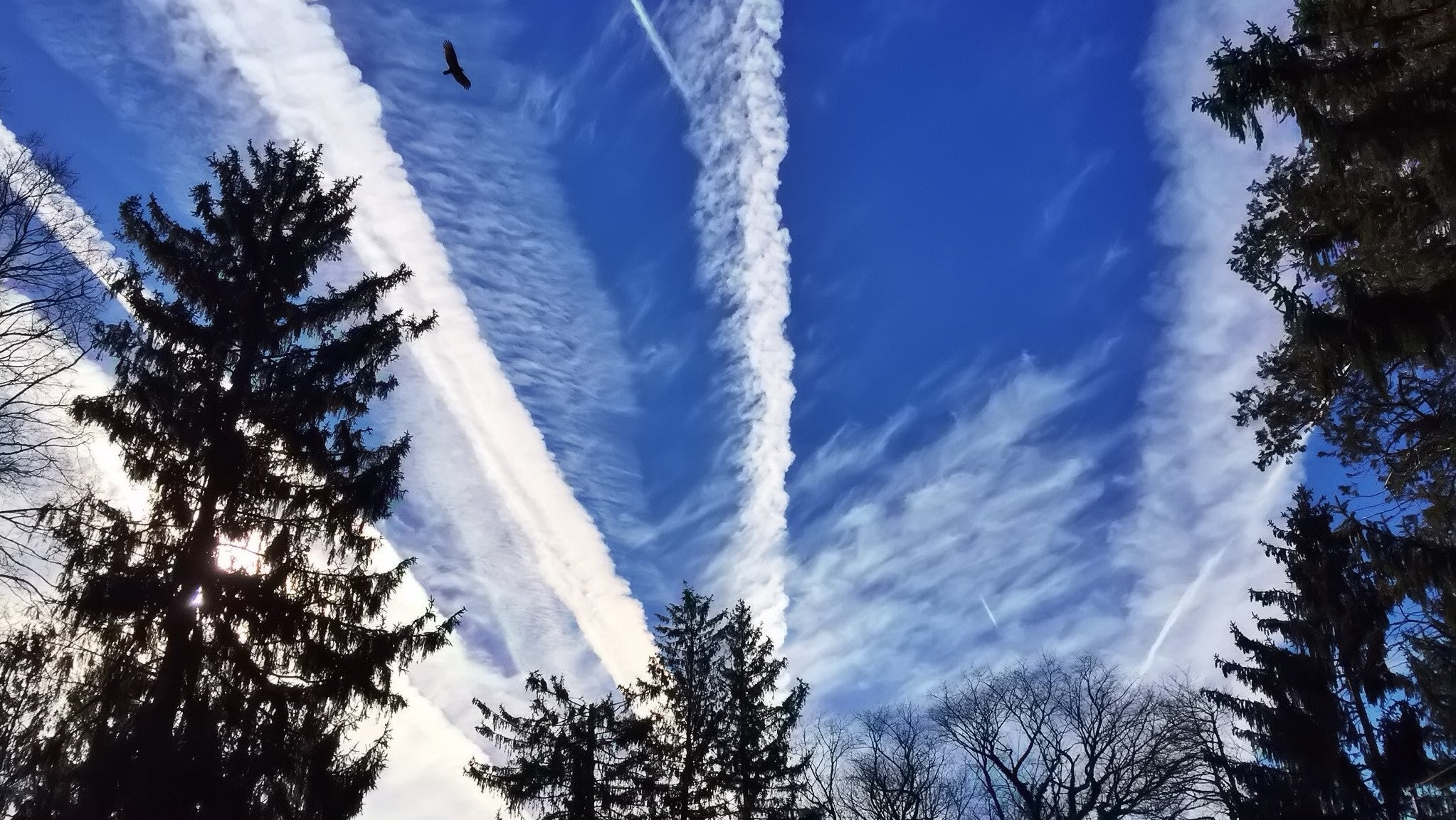 Aeroplane Contrails Have Surprising Effect On The Atmosphere