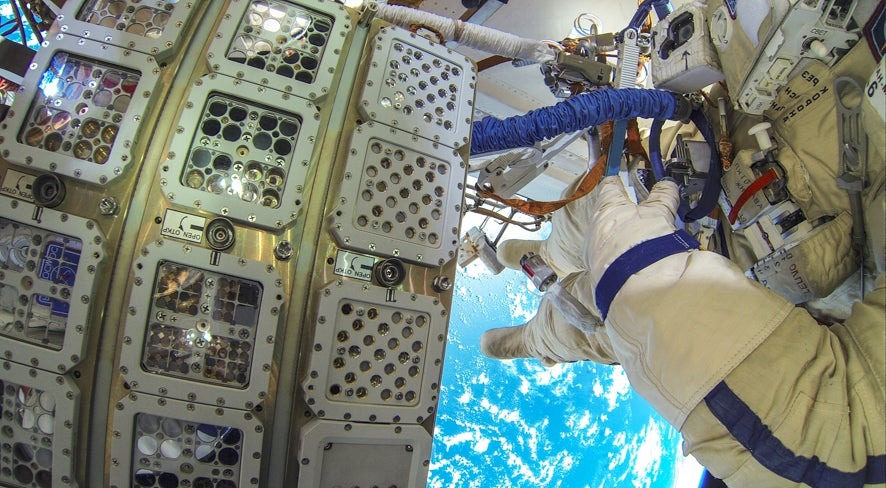 Freakishly Resilient Plants Managed To Survive A 450-Day Ordeal In Outer Space