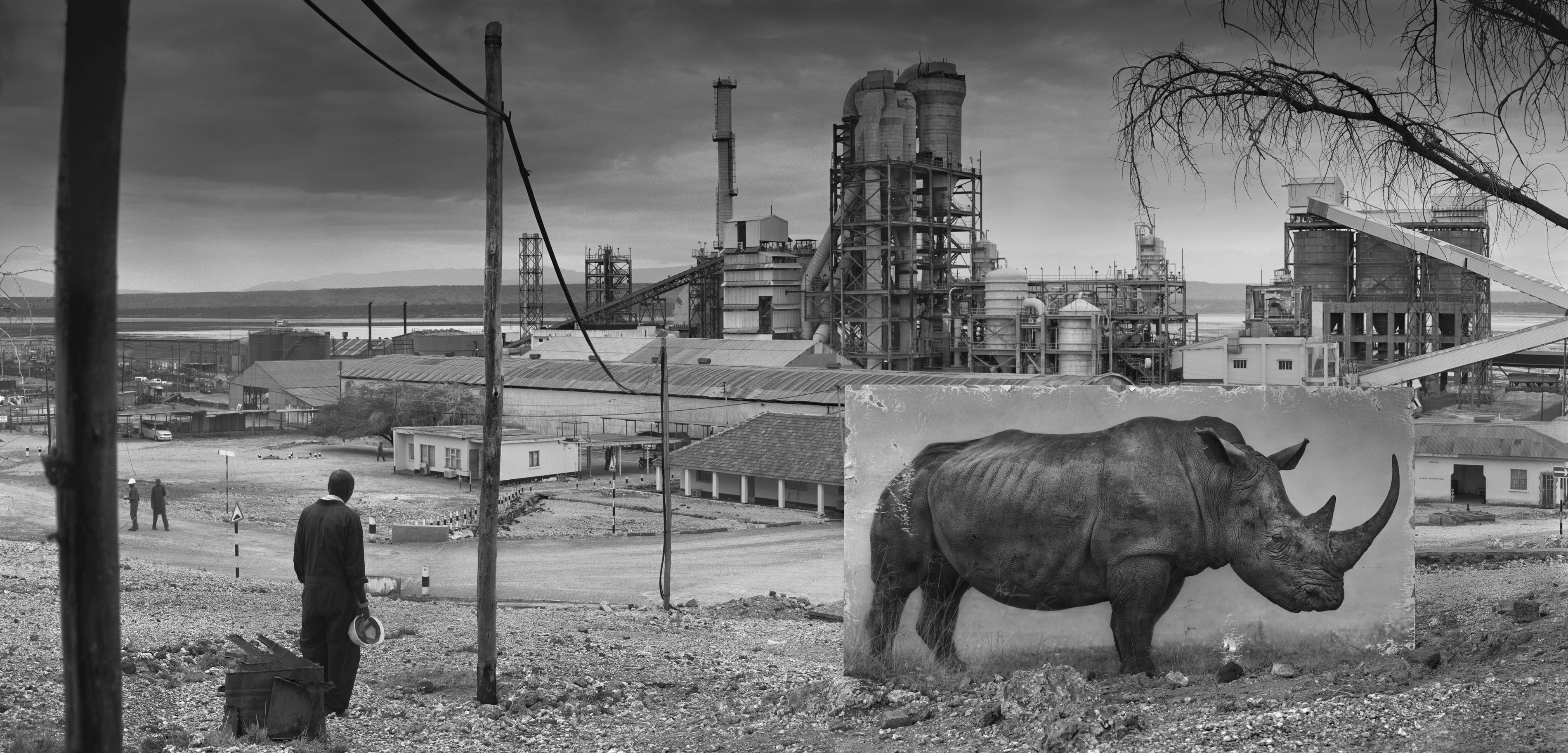 Harrowing Photographs Depict East Africa's Dystopian Future