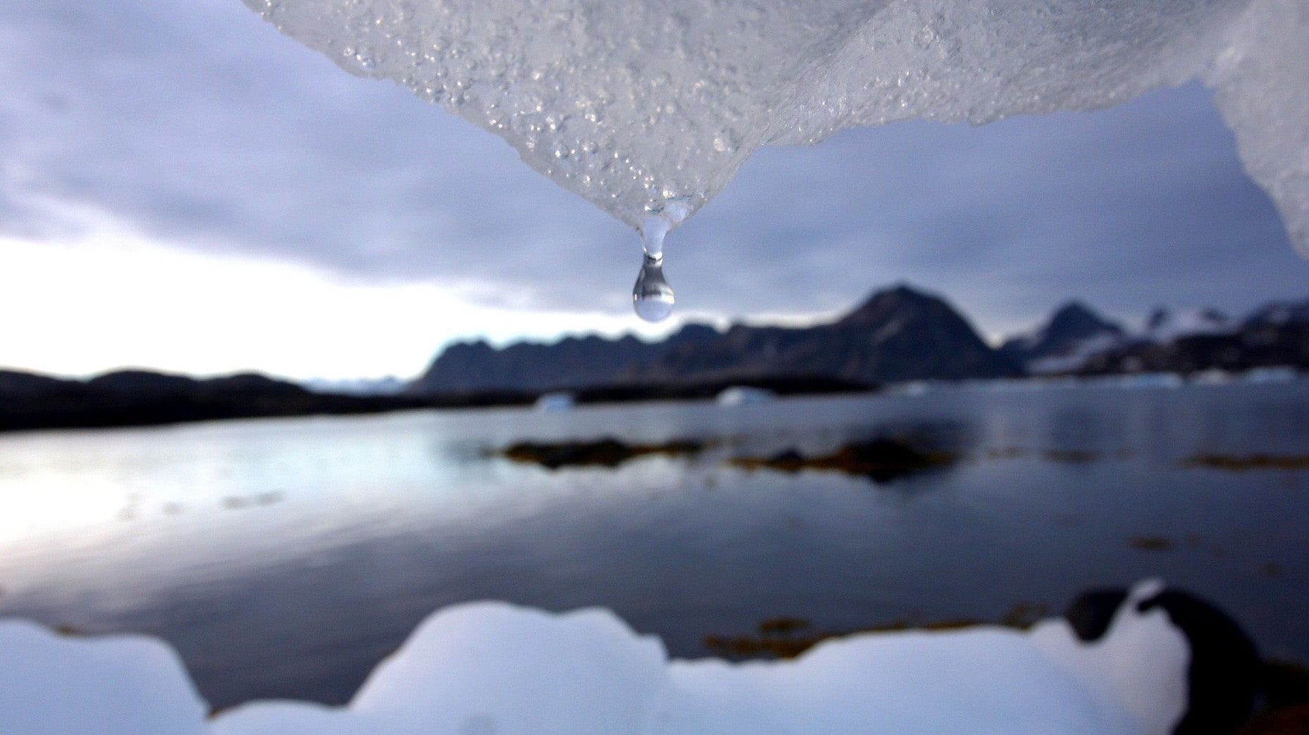 A Weather Station Above The Arctic Circle Hit 35 Degrees Celsius