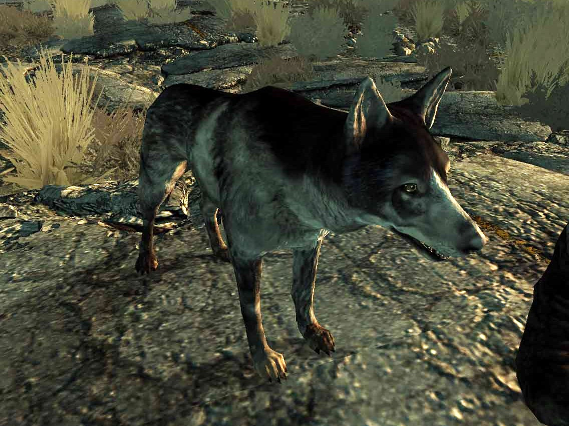 It's National Dog Day. Let's Celebrate Gaming's Greatest Canines.