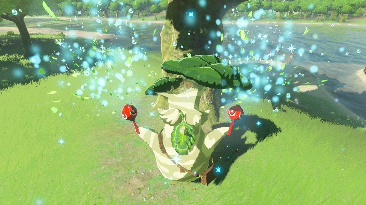 Someone Has Found All 900 Korok Seeds In Zelda Kotaku