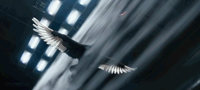 Watch an incredibly realistic CGI black swan fly in a wind tunnel