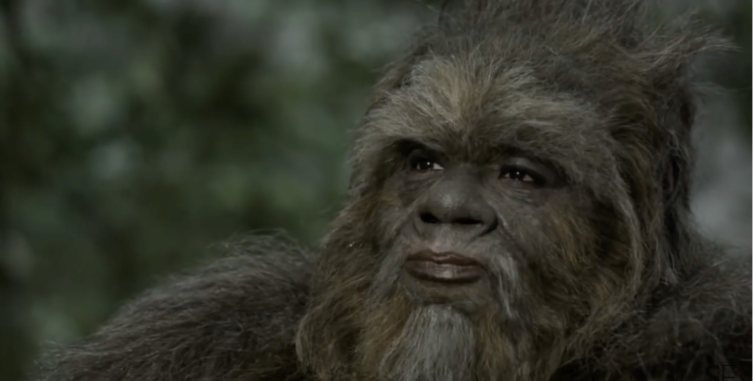 Follow The Giant Footprints To These 8 Superior Bigfoot Movies
