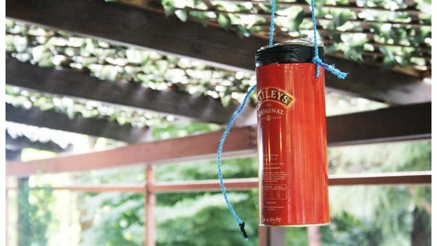 Keep Mosquitoes At Bay With This Plastic Bottle Trap