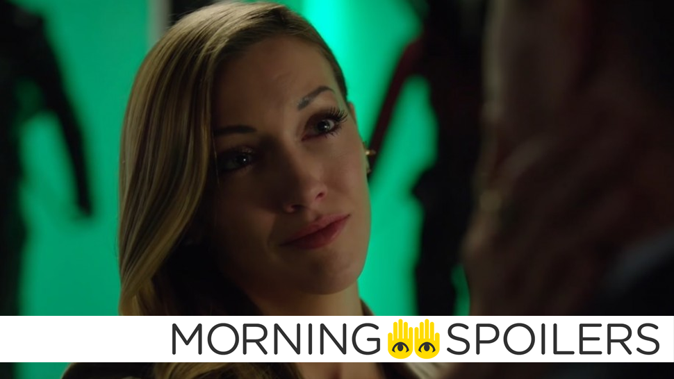 Is There Still A Future For Laurel Lance On Arrow?