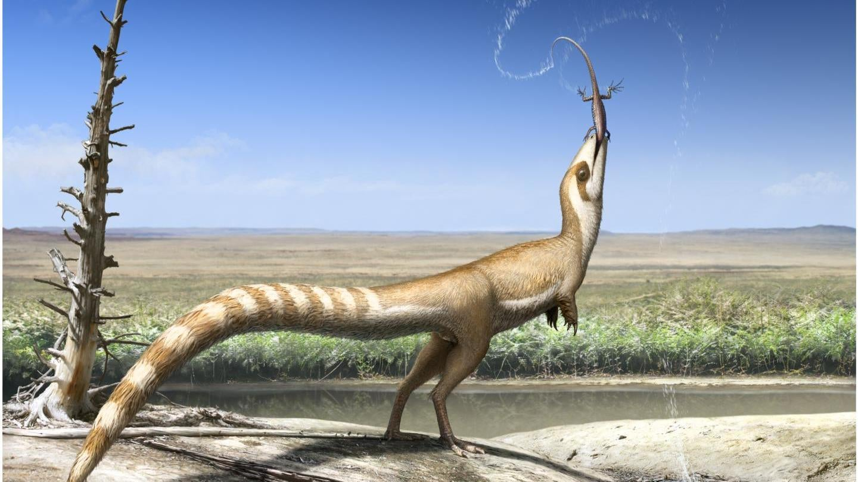 Adorable Cretaceous-Era Dinosaur Sprouted Raccoon-Like Bandit's Eyes