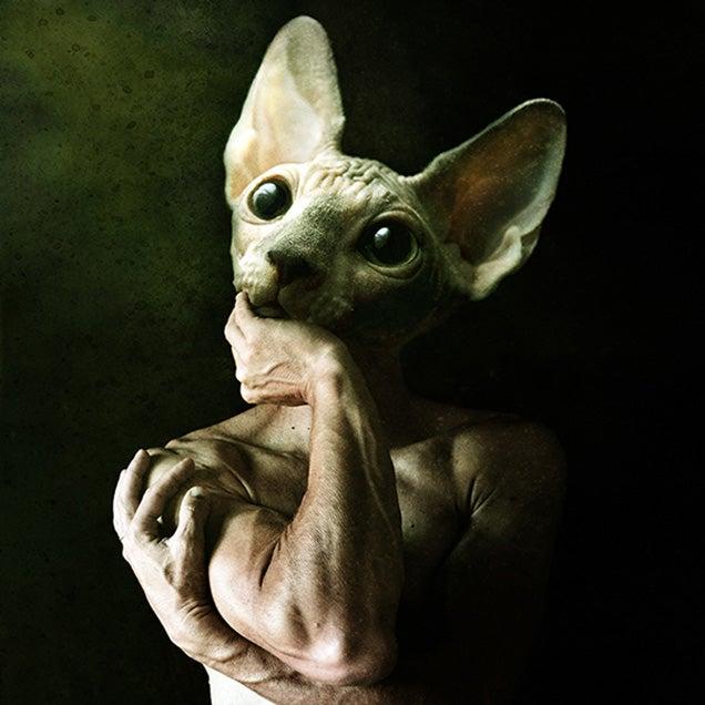 The creepy bestiary of artist Francesco Sambo
