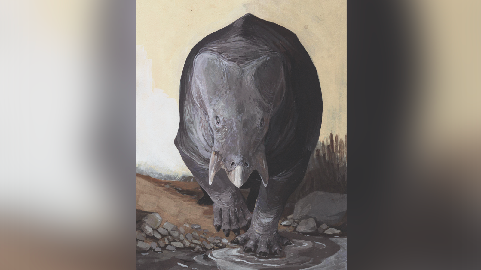 During The Triassic Period, This Elephant-Sized Relative Of Mammals Lived Alongside The Dinosaurs